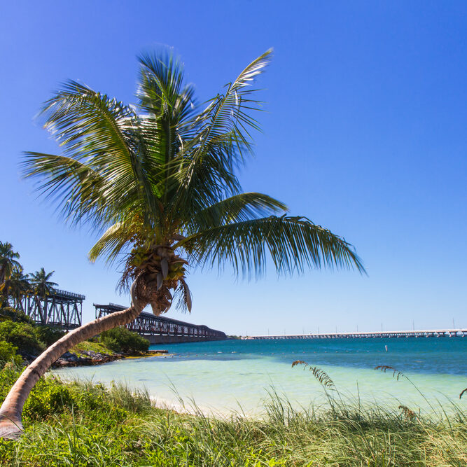 Landscape at Bahia Honda Beach, Florida Keys, USA