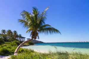 picture of Bahia Honda looking out towards the water with the bridge in the background